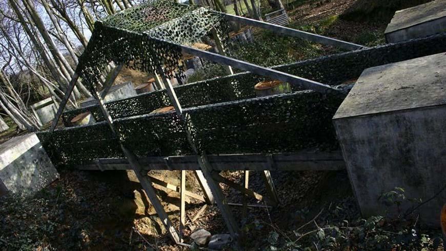 Green Netting On Grey Bridge