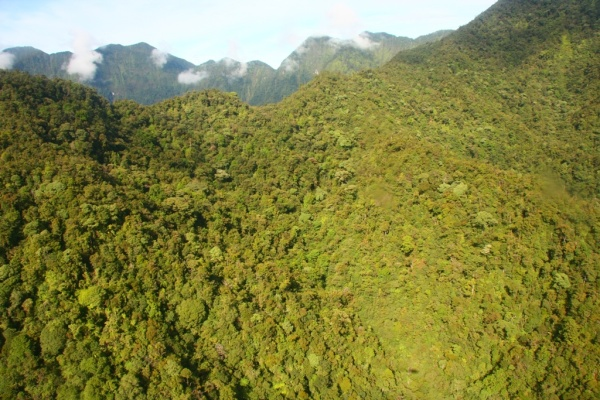 Mount Bosami, Papa New Guinea
